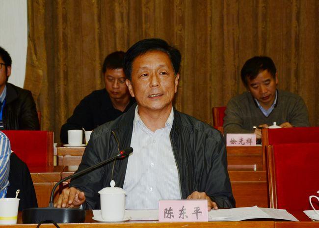 中国华能集团公司副总工陈东平